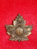 100th Battalion (Winnipeg) Collar Badge