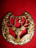 72nd Battalion (Seaforth Highlanders) Officer's Silver Plated Cap Badge