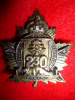 230A Battalion (Forestry) Officer's Cap Badge