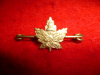 229th Battalion (South Saskatchewan) Tie-Pin