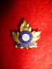 198th Battalion (Canadian Buffs) Sweetheart Pin, Ellis