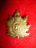 255th Battalion (Queen's Own Rifles) Collar Badge