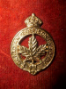 37-1, Canadian Garrison Regiment Collar Badge