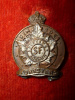 M58 - Simcoe Foresters Officer's Silvered & Bronze Collar Badge