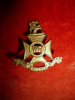 M53a, The Wellington Regiment 1928 Collar Badge