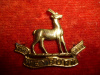 M141 - The Weyburn Regiment Right Collar Badge