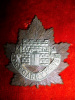 C50 - Fort Garry Horse Regiment 1st Type Cap Badge
