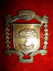 C54 - New Brunswick Regiment (Tank) Cap Badge