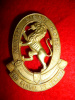 9th Light Horse Cap Badge