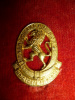 9th Light Horse Collar Badge