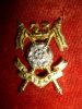 23rd Cavalry F.F. Cap Badge - Indian Army