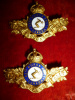 MM121 - 33rd Huron Regiment Officer's Collar Badge Pair